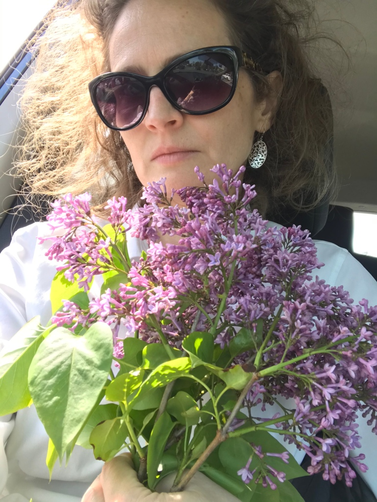Cuello holding lilacs in a car